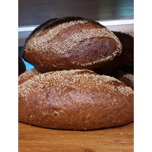 Grøvt Havrebrød