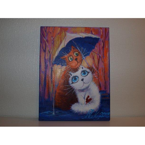 Søte katter nr. 3