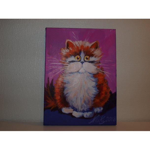 Søte katter nr. 4